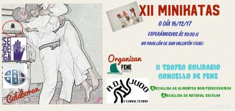 MINIKATAS CARTEL EN GALEGO C. (1)